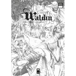 Waldin 2 NL - limited version
